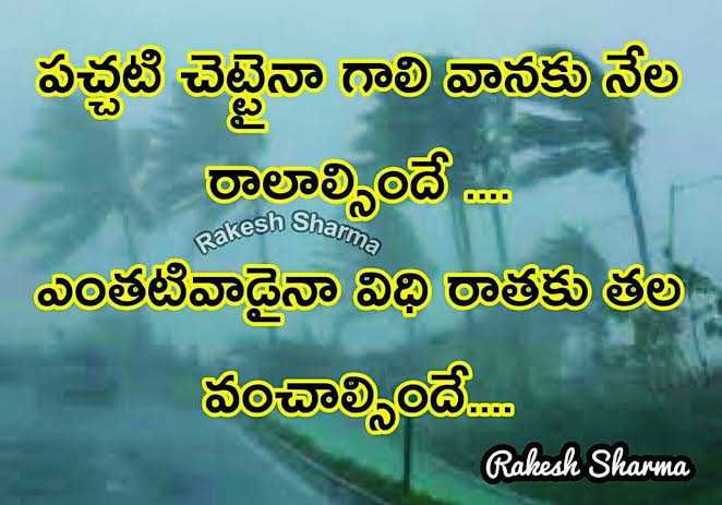 #quote - పచ్చటి చెట్టినా గాలి వానకు నేల రాలాల్సిందే . . . ఎంతటివాడైనా విధి రాతకు తల - - వంచాల్సిందే . . . . Rakesh Sharma Rakesh Sharma - ShareChat