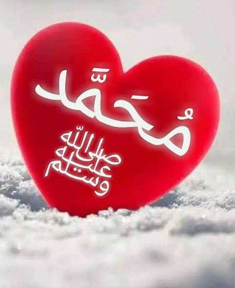 🌙rabee'ul avval🌙 - محمد ولن - ShareChat