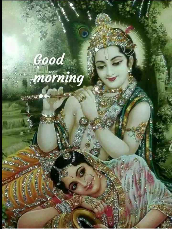 🌹radhe 🌹krishna🌹 - Good - morning 11 . - ShareChat