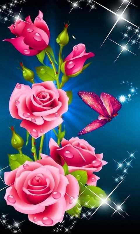 rose wallpaper - ShareChat