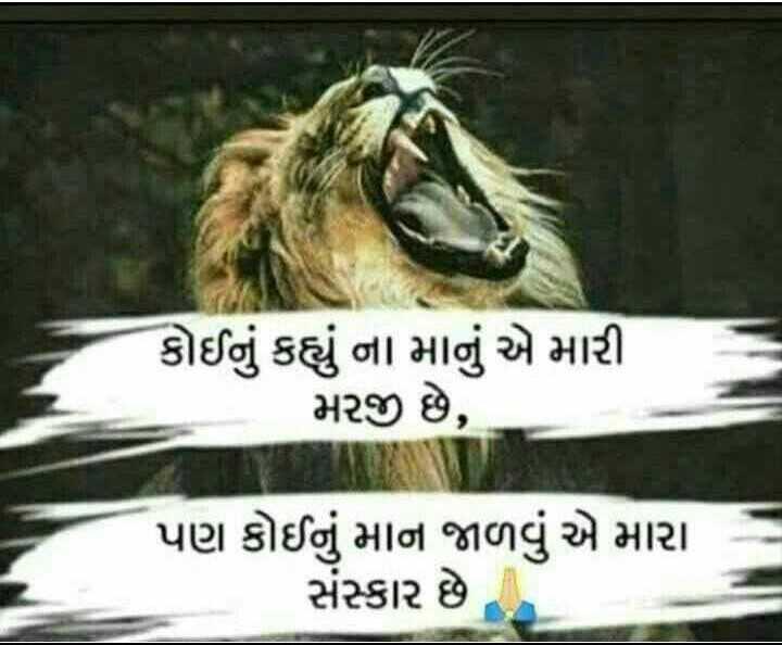 royal gujarati - રોયલ ગુજરાતી - કોઈનું કહ્યું ના માનું એ મારી મરજી છે , પણ કોઈનું માન જાળવું એ મારા સંસ્કાર છે - ShareChat