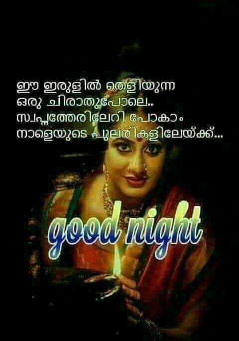 s..s - ഈ ഇരുളിൽ തെളിയുന്ന ഒരു ചിരാതുപോലെ . . ' സ്വപ്നത്തേരിലേറി പോകാം ' നാളെയുടെ പുലരികളിലേയ്ക്ക് . . . good night - ShareChat