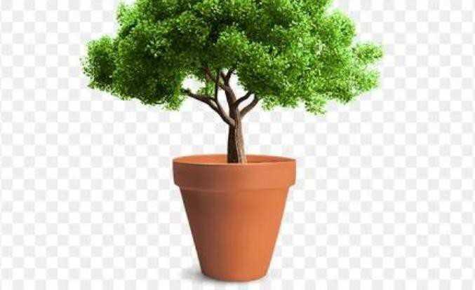 save environment - ShareChat