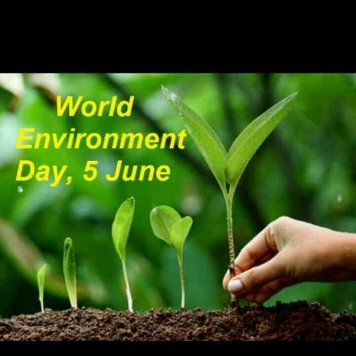 save environment - World Environment Day , 5 June - ShareChat