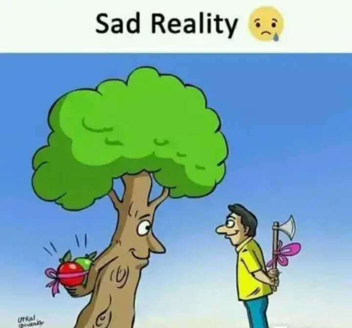 save tree 🌲🌳🌴🏝️ save environment 🌍🌍 - Sad Reality Utkal - ShareChat