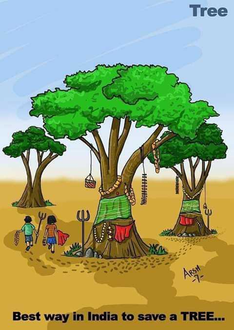 save trees - Tree Best way in India to save a TREE . . . - ShareChat