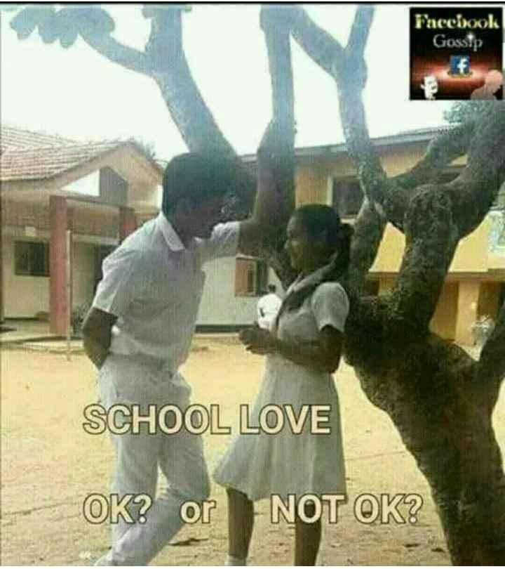 school life - Faccixok Gossip SCHOOL LOVE OK ? or NOT OK ? - ShareChat