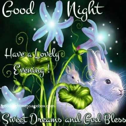 seth ji - Good Night Have a lovely 6 Evening ! goodsightmessagebox . com Sweet Dreams and God Bless - ShareChat