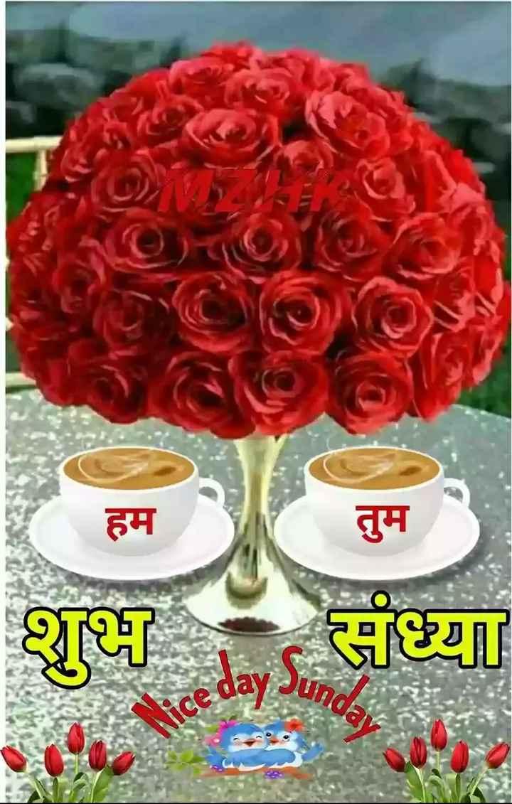 shubh sham - हम तुम रॉय 1 und - ShareChat