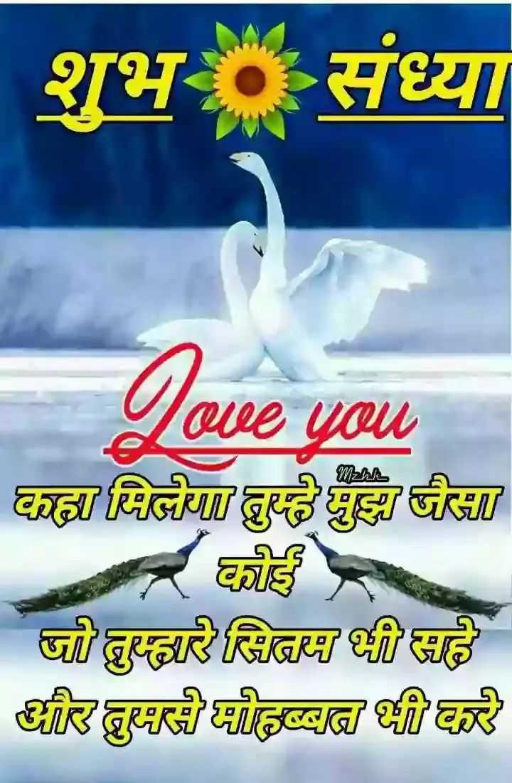 shubh sham - शुभ संध्या love you - - ! छ / विजय ढुक्क छु > दी   हुए जिZा दर हुदा है है - ShareChat