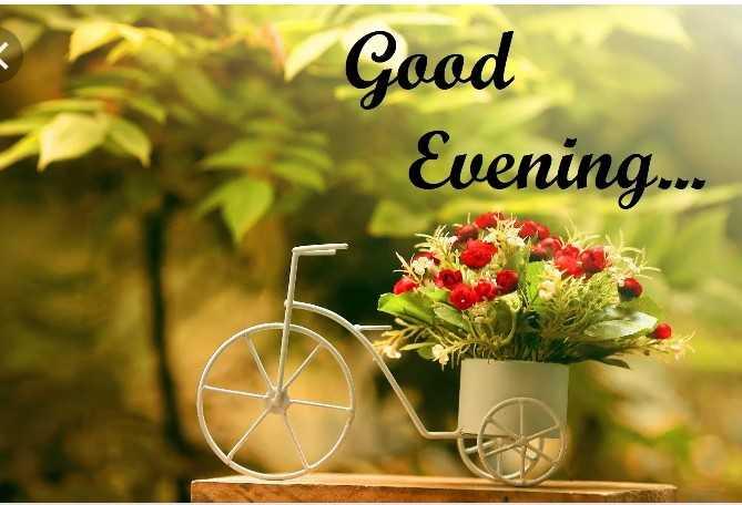 shubh sham - Good Evening . - ShareChat