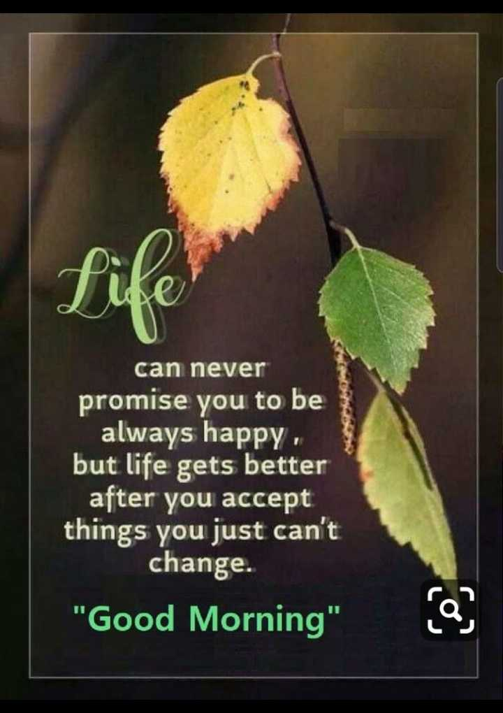 shubodaya snehithare. 🌸🌷🌸 - can never promise you to be always happy . but life gets better after you accept things you just can ' t change . Good Morning - ShareChat