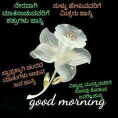 shubodaya snehithare. 🌸🌷🌸 - ನೇರವಾಗಿ ಸುಳ್ಳು ಹೇಳುವವರಿಗೆ ಮಾತನಾಡುವವರಿಗೆ ಮಿತ್ರರು ಜಾಸ್ತಿ ಶತ್ರುಗಳು ಜಾಸ್ತಿ ಸ್ವಾಥಕ್ಕಾಗಿ ಚಂದದ ಮಾತುಗಳು ಆಡುವ ಜನ ಜಾಸ್ತಿ ನಿಶ್ವಾಢ ಮನಸ್ಸಿನವರಿಗೆ ನೋವು ಕೊಡುವ good morning - ShareChat