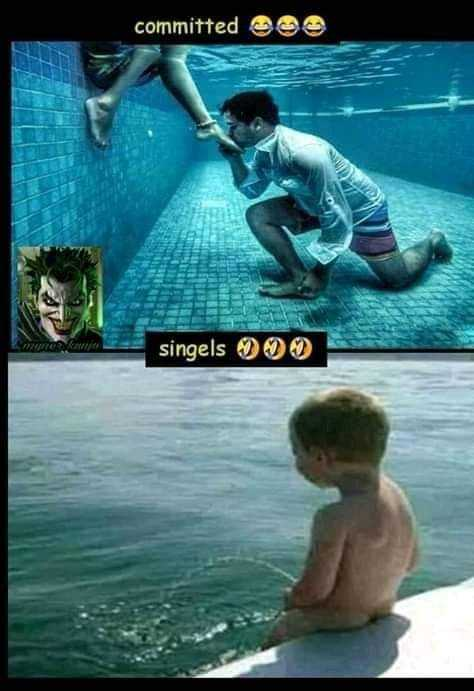single vs committed - committed OS singels - ShareChat