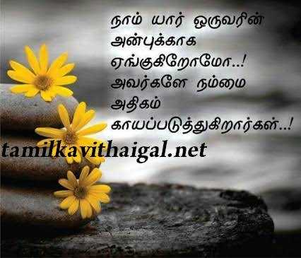 😲 single vs married life - நாம் யார் ஒருவரின் அன்புக்காக ஏங்குகிறோமோ . . ! அவர்களே நம்மை அதிகம் காயப்படுத்துகிறார்கள் . . ! tamilkavithaigal . net - ShareChat