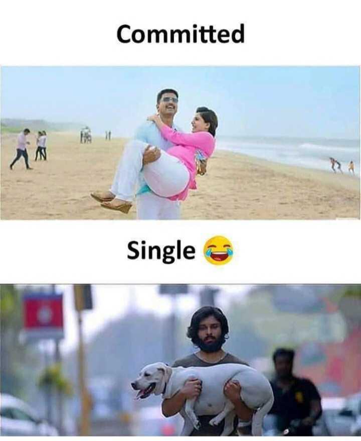 singls பரிதாபங்கள் 😅😂😂 - Committed Single - ShareChat