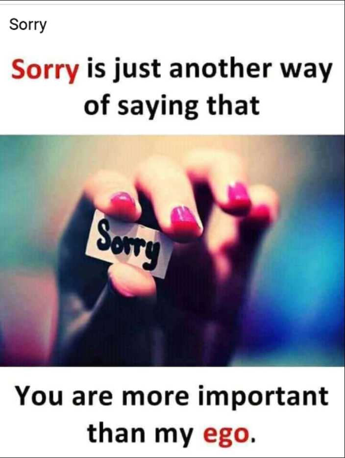 soory..... soory....sorry... - Sorry Sorry is just another way of saying that You are more important than my ego . - ShareChat