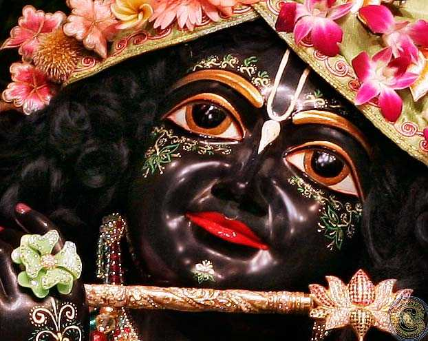 sri krishna - . ا ) : دکتر - ShareChat