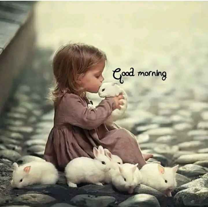 status - Good morning - ShareChat