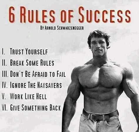 subhadeep - 6 RULES OF SUCCESS BY ARNOLD SCHWARZENEGGER I TRUST YOURSELF II . BREAK SOME RULES III . DON ' T BE AFRAID TO FAIL IV . IGNORE THE NAYSAYERS V . WORK LIKE HELL VI . GIVE SOMETHING BACK - ShareChat