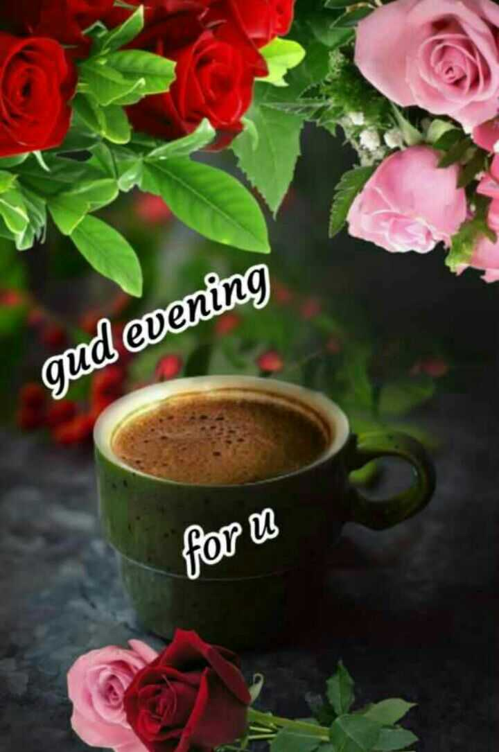 subh sanj - evening foru - ShareChat