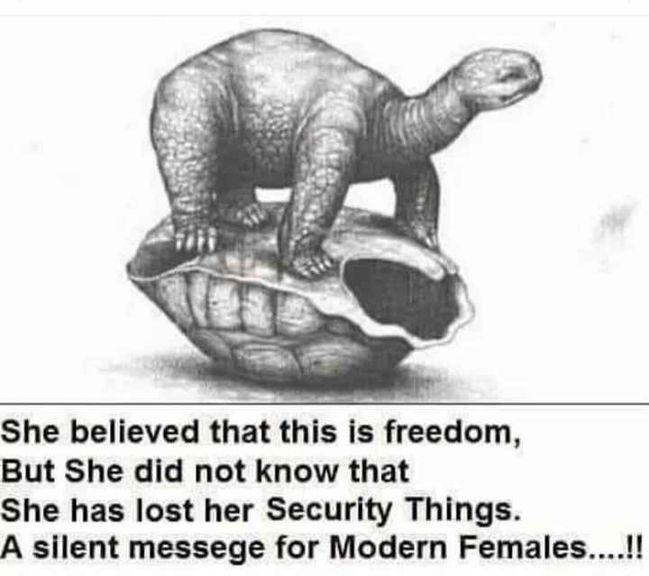 sundar vichar - She believed that this is freedom , But She did not know that She has lost her Security Things . A silent messege for Modern Females . . . . ! ! - ShareChat