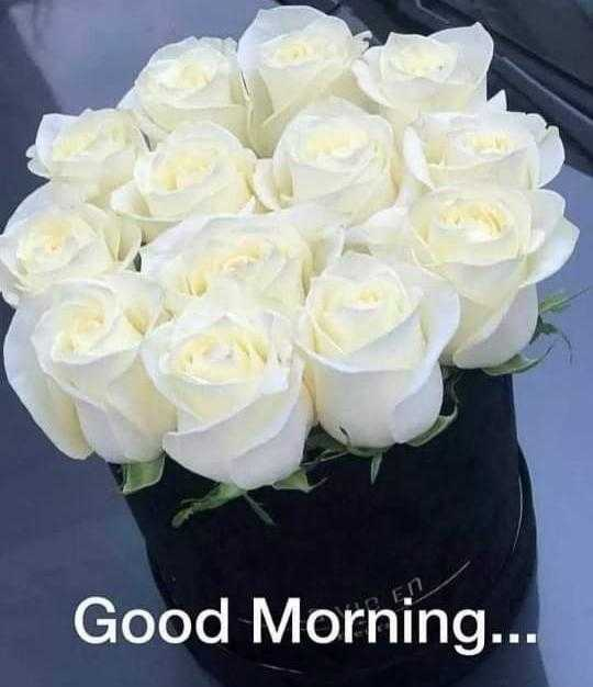 tarak - Good Morning . . . - ShareChat