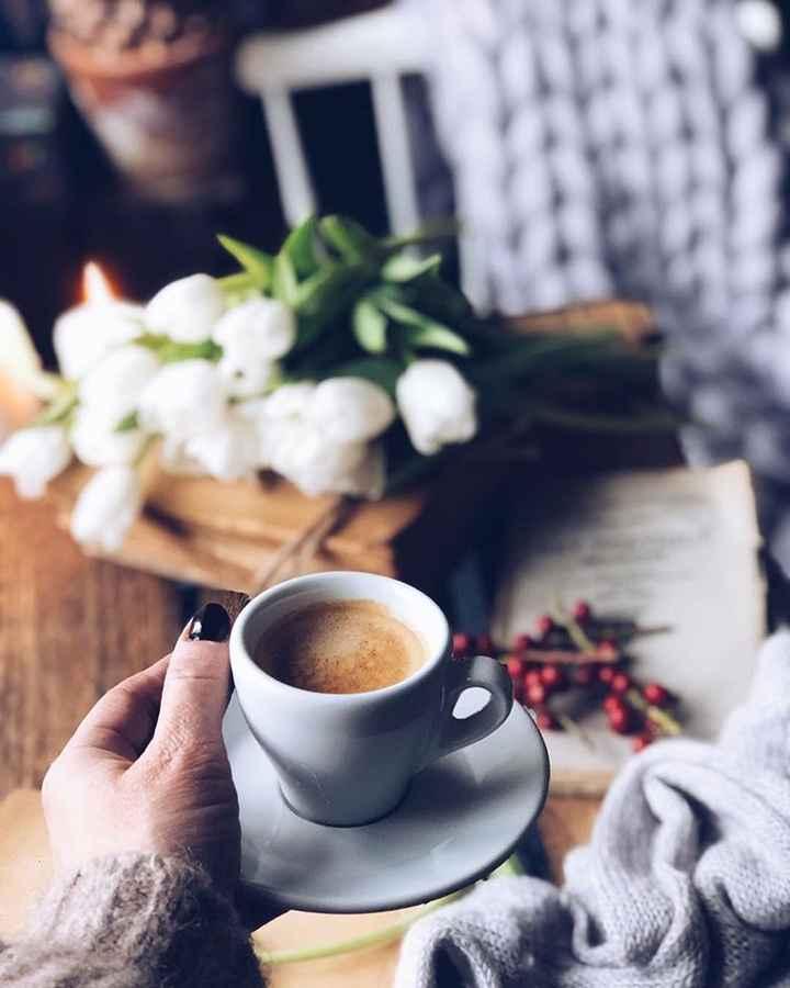 tea time - ShareChat