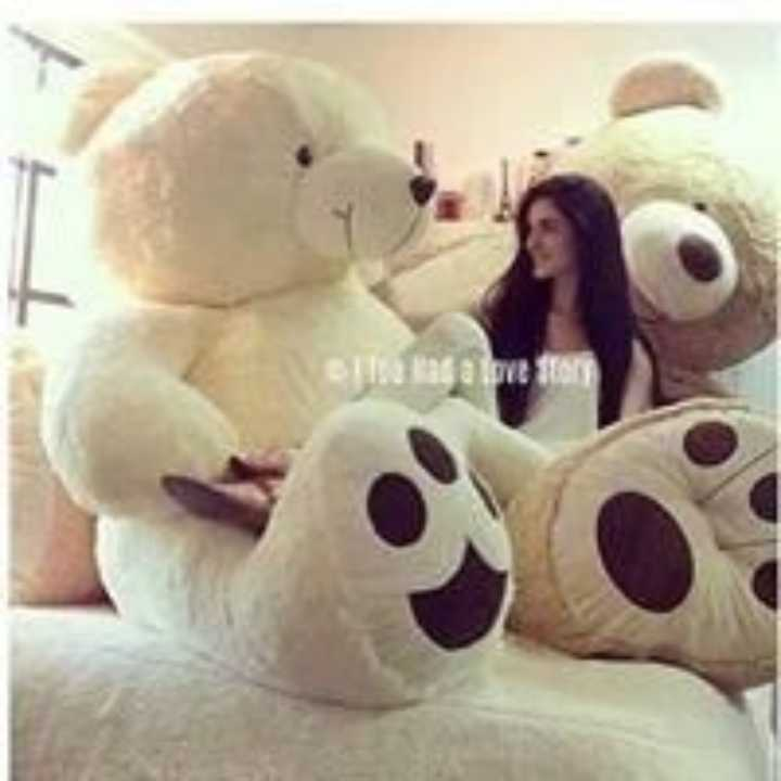 teddy bear 😙😙😙 - Nasa pel - ShareChat