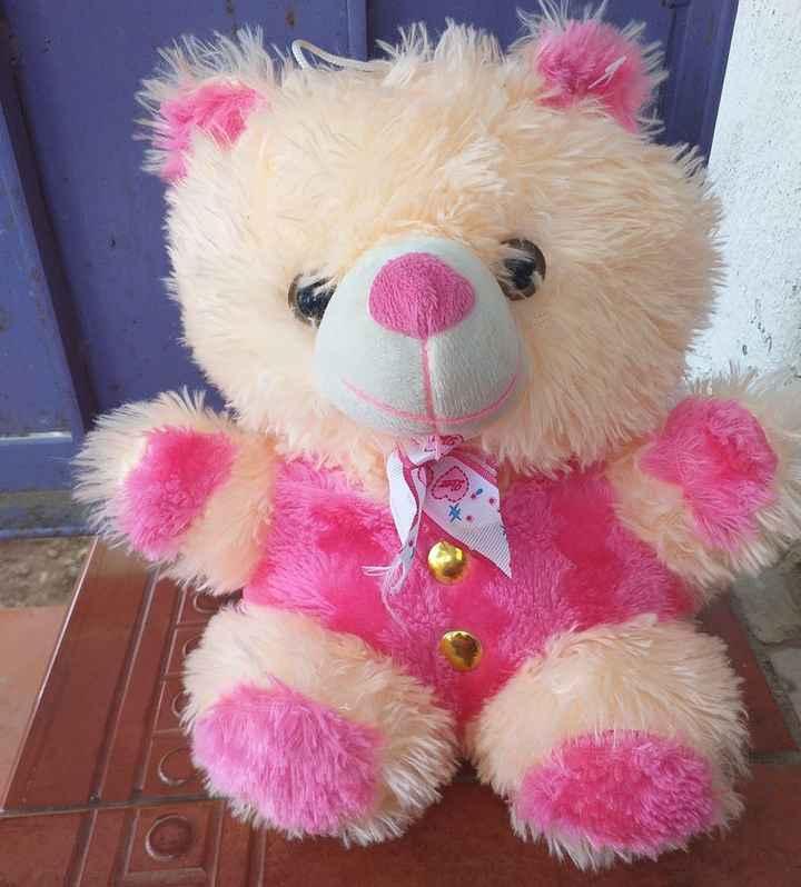 teddy bear - ShareChat