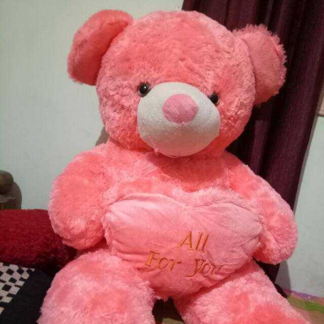 teddy bears - All For you - ShareChat