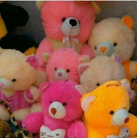 teddy bears - Faro - ShareChat