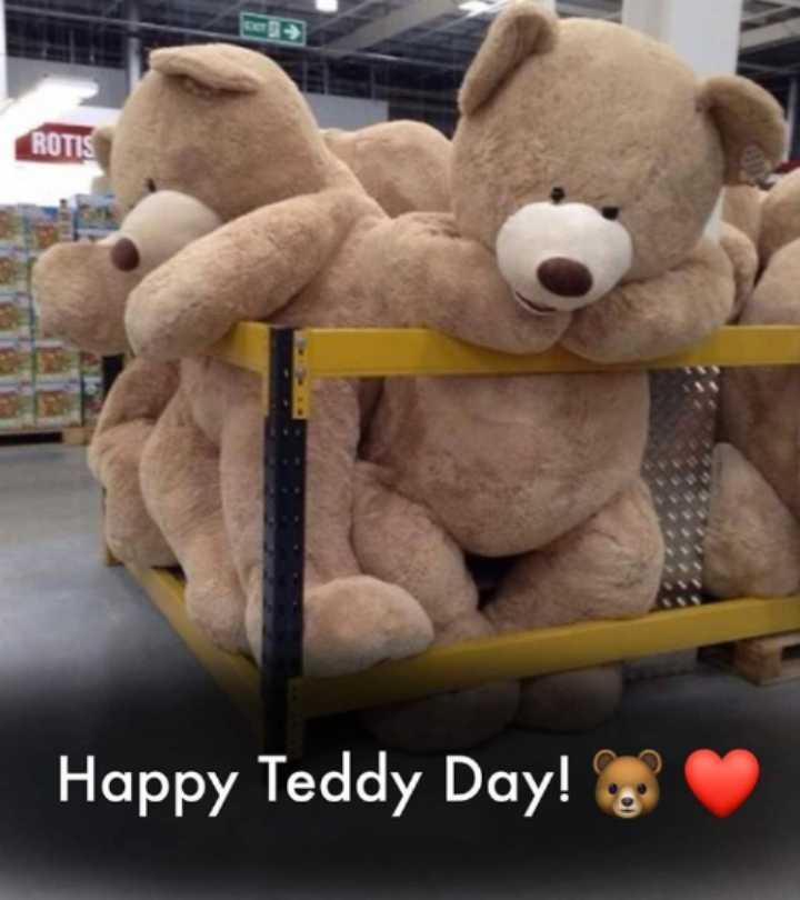 Teddy day 💓💓💓💓💓🐻🐻🐻🐻. - ROTIS Happy Teddy Day ! - ShareChat