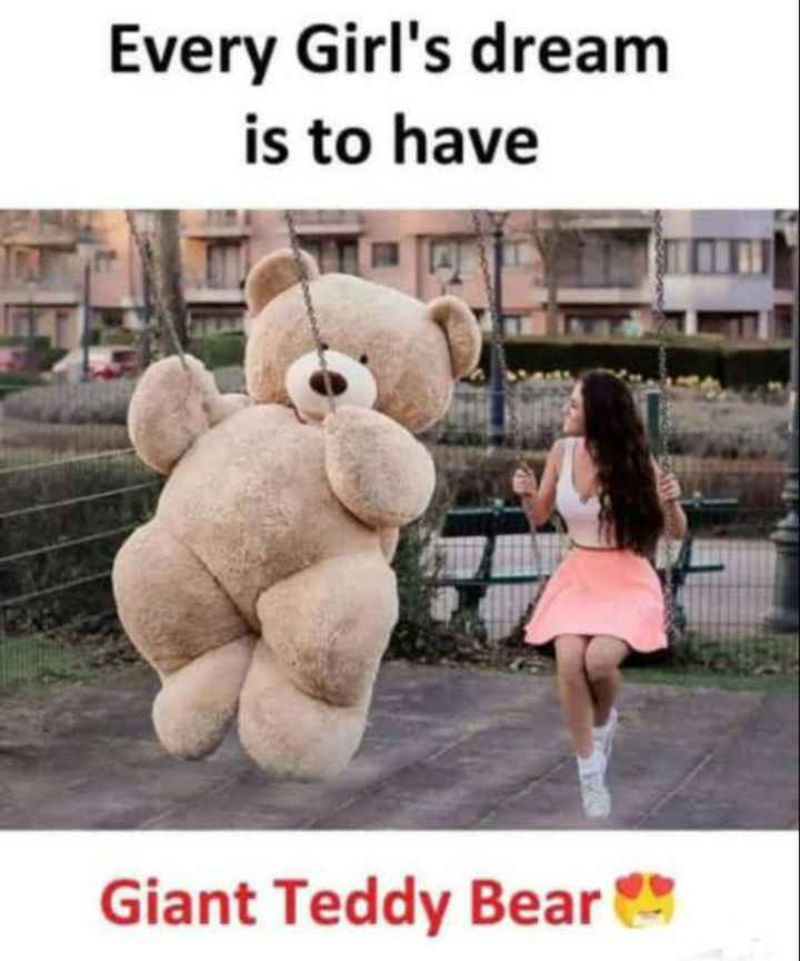 teddy love - Every Girl ' s dream is to have Giant Teddy Bear - ShareChat