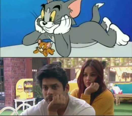 tom and jerry - ShareChat