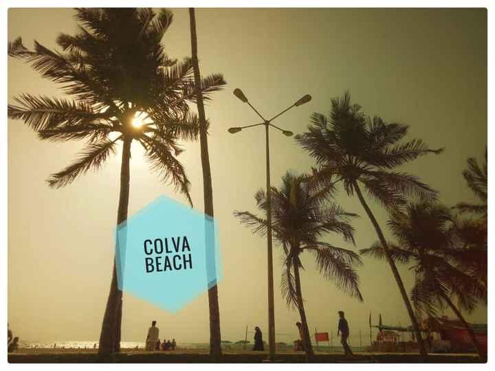 trip mood - COLVA BEACH - ShareChat