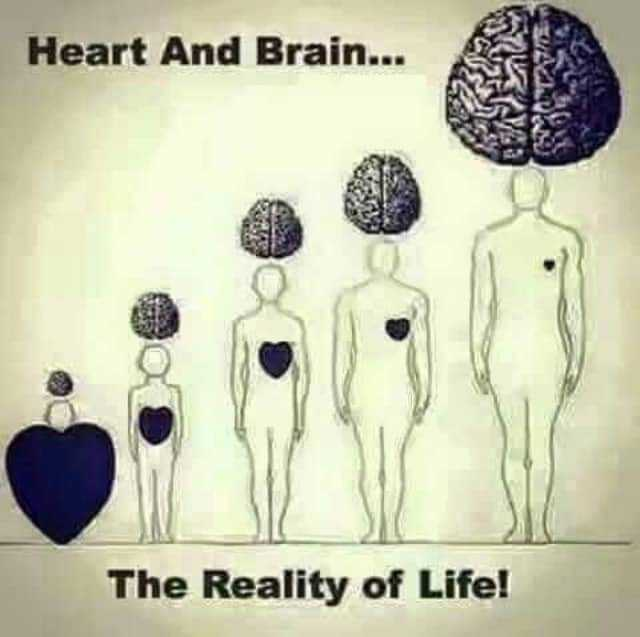 troll - Heart And Brain . . . The Reality of Life ! - ShareChat