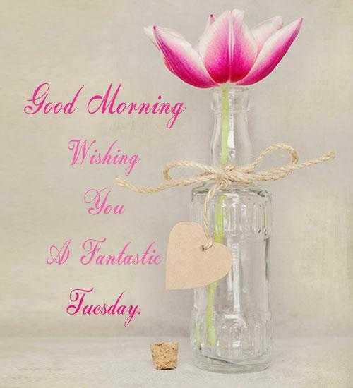 💕💕💜💕tum hi ho 💕💜💕💕 - Good Morning Wishing A Fantastic Tuesday - ShareChat