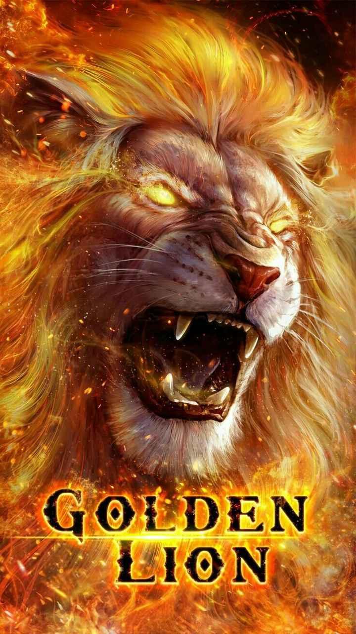 wallpapers - GOLDEN LION - ShareChat
