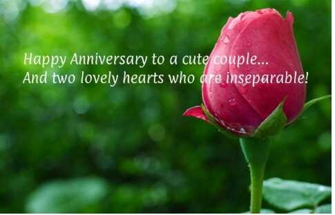wedding anniversary - Happy Anniversary to a cute couple . . . And two lovely hearts who are inseparable ! - ShareChat