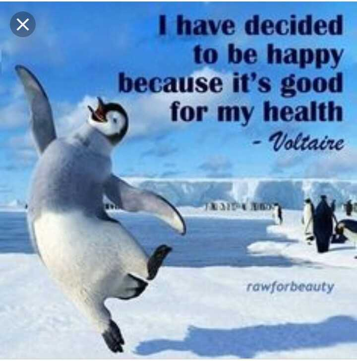 🐧 world penguin day - I have decided to be happy because it ' s good h for my health - Voltaire rawforbeauty - ShareChat