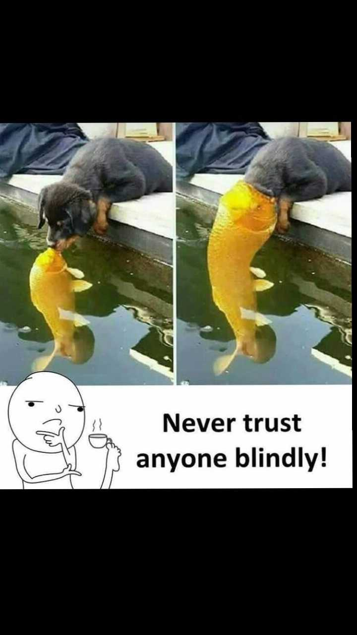yes true - Never trust anyone blindly ! - ShareChat