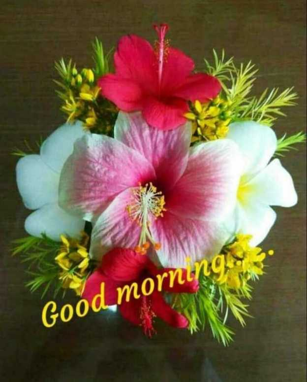 🌞সুপ্রভাত - Good mornin - ShareChat