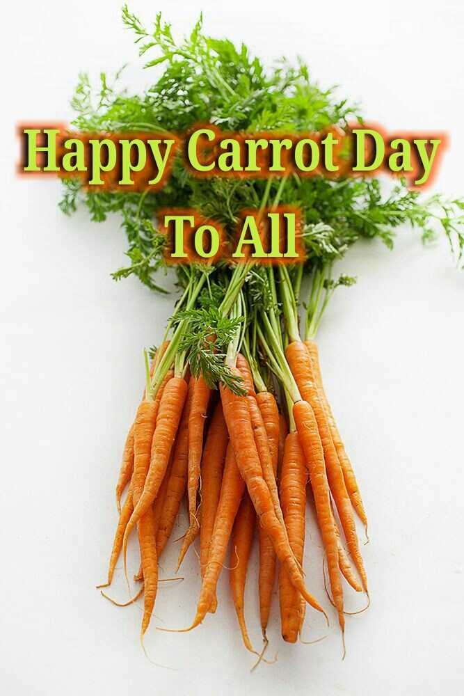 🥕கேரட் தினம் - Happy Carrot Day To All - ShareChat