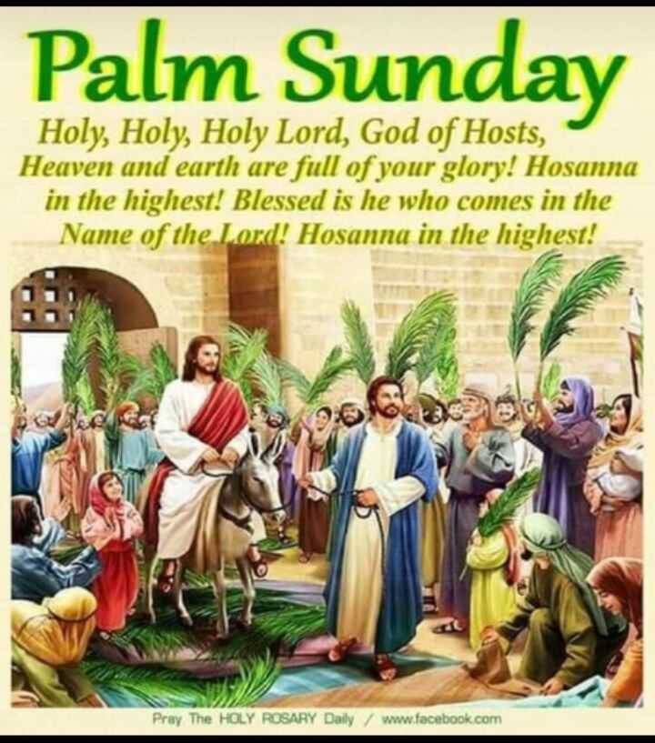 ✝️ ਯਿਸੂ ਮਸੀਹ - Palm Sunday Holy , Holy , Holy Lord , God of Hosts , Heaven and earth are full of your glory ! Hosanna in the highest ! Blessed is he who comes in the Name of the Lord ! Hosanna in the highest ! NOU Pray The HOLY ROSARY Daily / www . facebook . com - ShareChat
